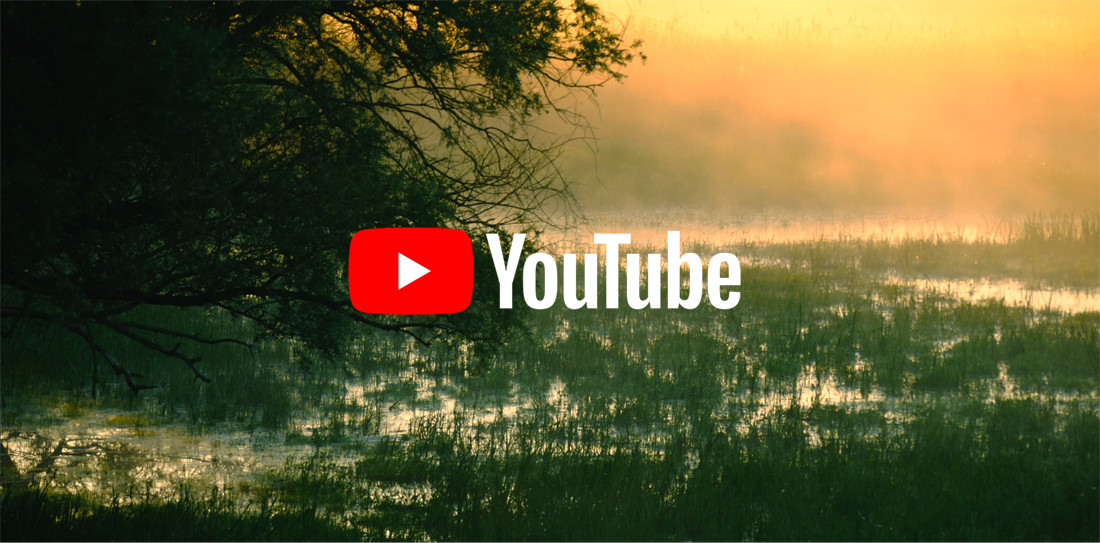 Stephan Schulz Naturfilm